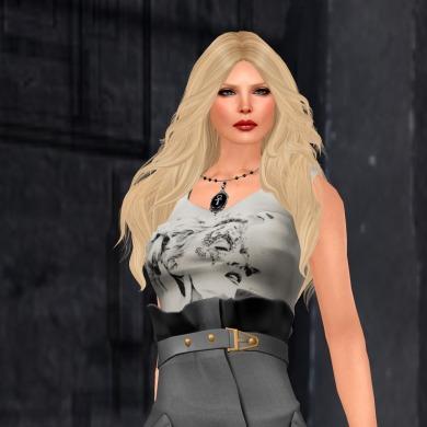 de boutique shades of gray_002
