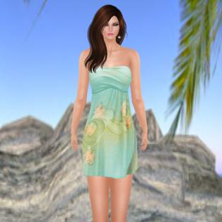 Luckonen Dress Spring
