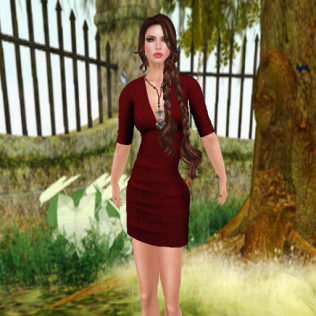 ar arya dress_001